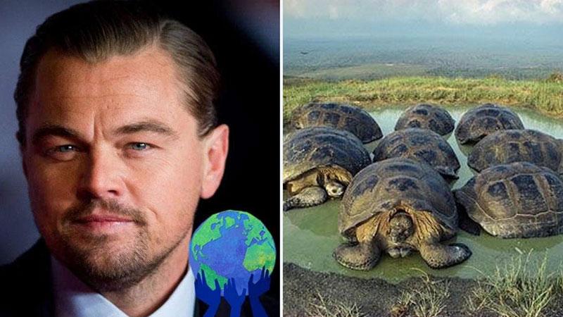 DiCaprio donazione Galapagos